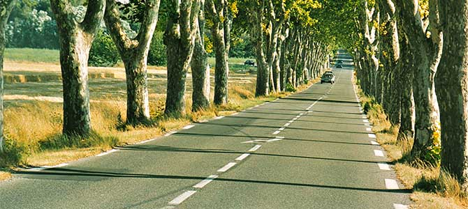 French road. Picture courtesy smithsmagazine.co.uk